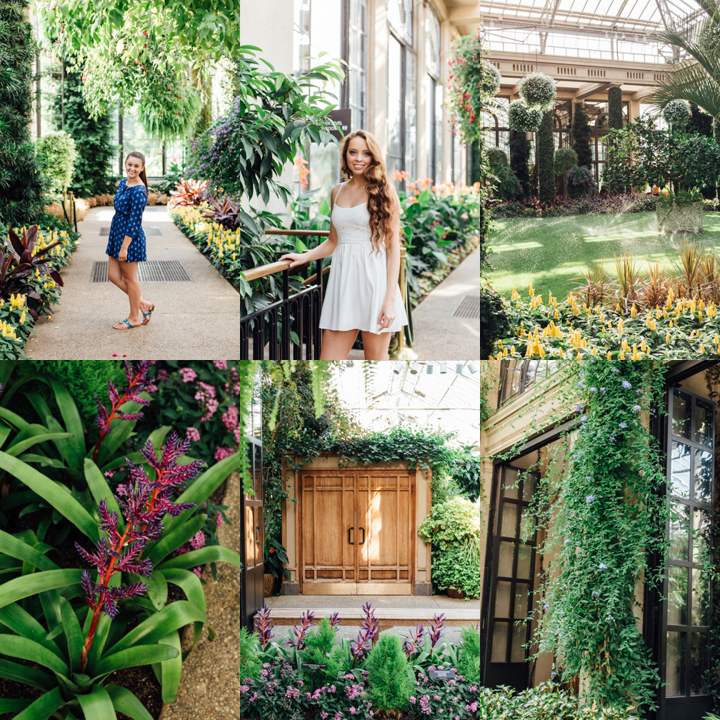 A Day At Longwood Gardens Kate Tandy Photography