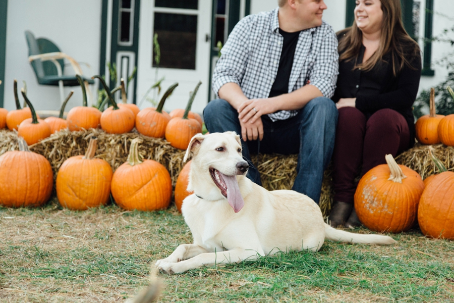barnards-orchard-chester-county-pa-couple-pictures_0003